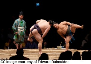 Sumo Wrestling Which Martial Arts