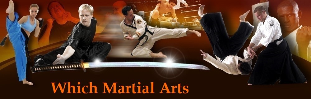 Which Martial Arts
